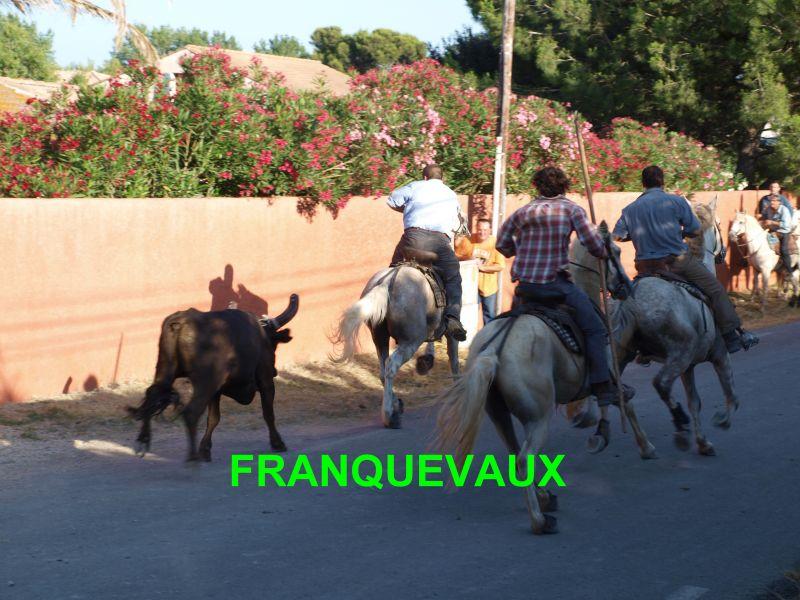franquevaux072010079.jpg