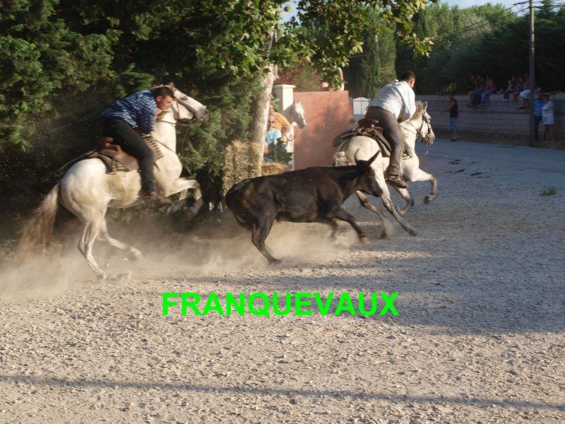 franquevaux072010136.jpg