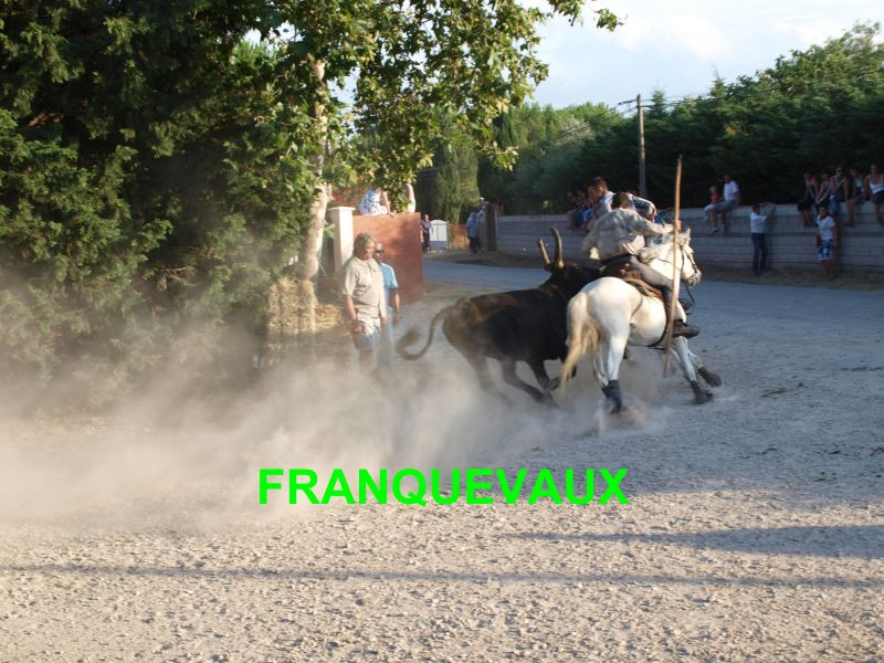 franquevaux072010139.jpg