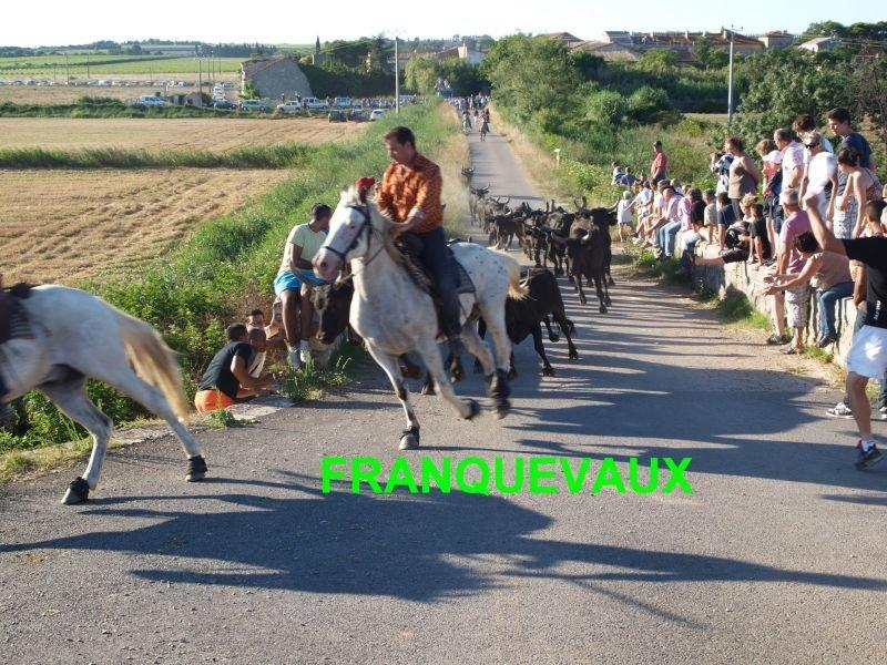 franquevaux072010suite014.jpg